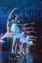 Ballet Conservatory of Asheville -- Pre-Professional Training